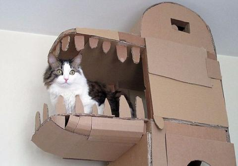This Man Is So Obsessed With His Cat He Built It A Full-Blown Castle!
