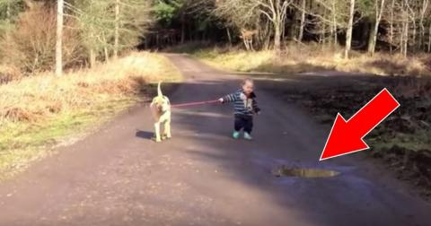 This Dog's Reaction When The Little Boy Wants To Jump In A Puddle Will Melt Your Heart