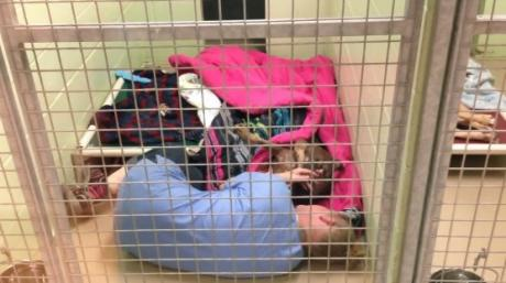 She Was Shocked To Find Her Colleague Curled Up In A Tiny Cage - Then She Discovered The Heartbreaking Reason Why