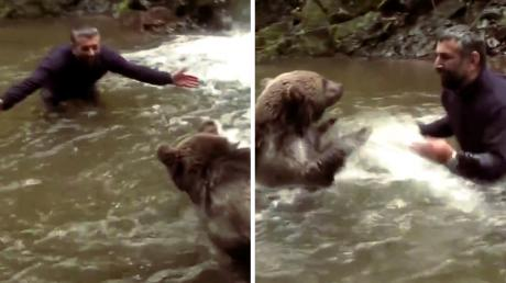 He Saved A Baby Bear's Life - When They Met Again Years Later His Reaction Was Incredible