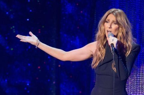 Celine Dion Concert Comes To A Halt After Drunken Fan Storms The Stage