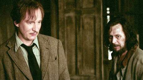 This Heartbreaking Sirius And Lupin Theory Could Change Everything For Harry Potter Fans