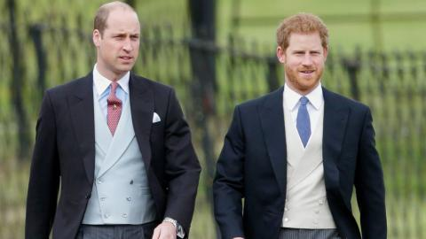A Royal Expert Believes Harry And William Are Growing Apart... And It Could Be Down To Meghan Markle