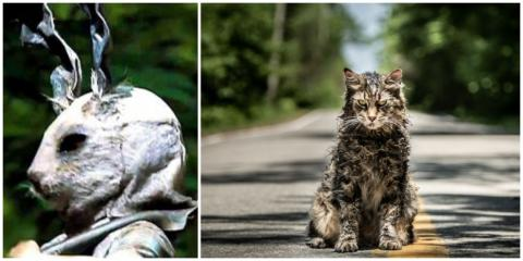 Mark Your Diaries: A Bloodcurdling Trailer For Stephen King's 'Pet Sematary' Has Dropped