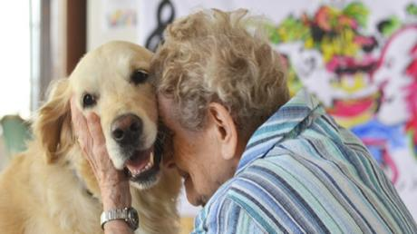 Elderly People Never Have To Be Separated From Their Beloved Pets Again, Thanks To This New Initiative