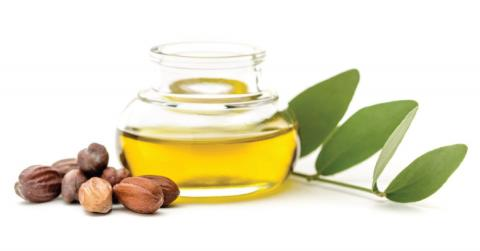 How Jojoba Oil Fights Acne And Oily Skin