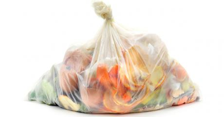 Are Biodegradable Plastic Bags Really Biodegradable?