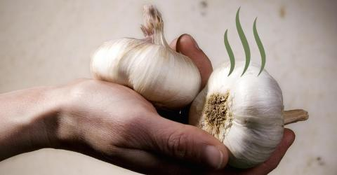 Are You Sick Of Your Hands Smelling Like Garlic Everytime? Here's A Tip For You!