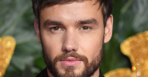 Liam Payne Bedded Love Island Winner Before Naomi Campbell Romance Was Revealed