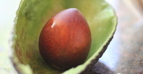 The Surprising Health Benefits Of Avocado Stones