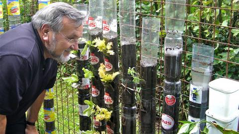 He Stacked Up Plastic Bottles In His Garden And A Year Later, The Results Are Incredible