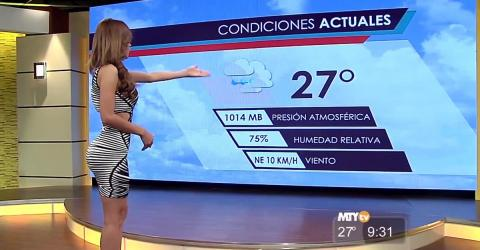 Once Named The Most Beautiful Weather Girl In The World, She's Undergone A Dramatic Physical Transformation
