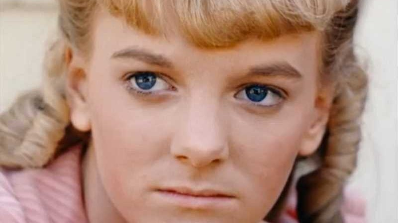This Is What The Actress Who Played Nellie Oleson On Little House On The Prairie Looks Like Now