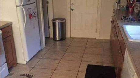 Only 3% Of People Can Spot The Dog Hidden In This Kitchen. Can You?
