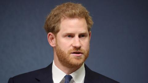 Prince Harry compares being a member of the Royal Family to living in a zoo