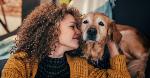 3 Things You Can Do To Help Your Dog Live Longer