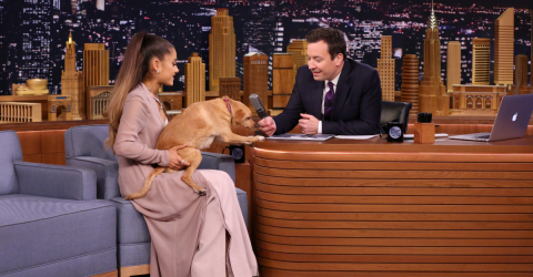 When Ariana Grande Is Feeling Down, She Flies Her Dogs Out In A Private Jet