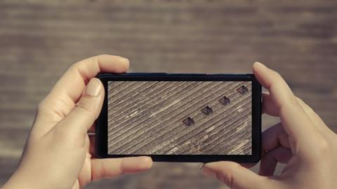 The Effect That Mobile Phones Have on Ants Is Terrifying
