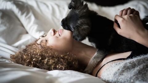 Study shows women sleep better next to dogs than their partners