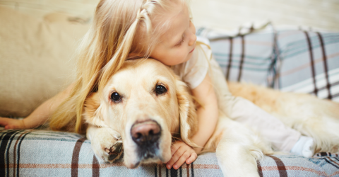 How Petting Your Dog Can Strengthen Your Bond