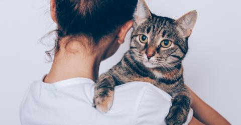 Two-thirds of people would rather spend time with their cat than their friends