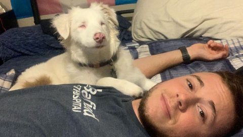 The way this man wakes his deaf and blind dog up in the mornings is too adorable