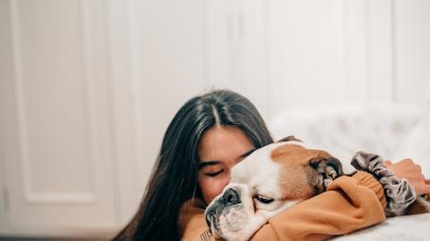 Getting a new pet? These are the most affectionate dog breeds