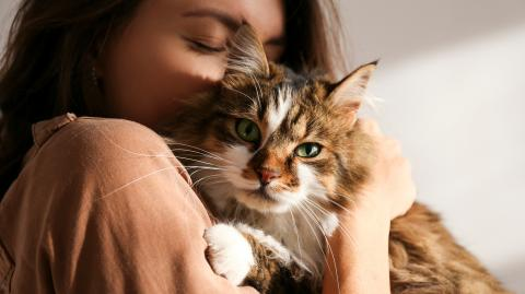 A new dating app is connecting cat lovers everywhere!