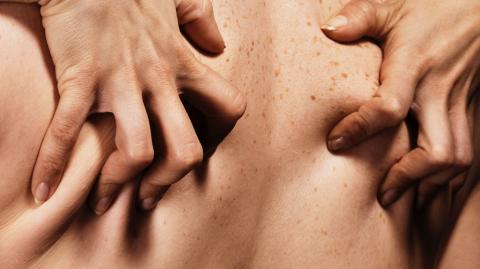 This is Autassassinophiliam the rather dangerous sexual practice