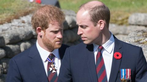 Prince William has 'second mum' that he doesn't share with Harry, who is it?