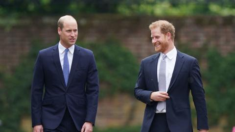 Harry tried to engage with William at Diana's tribute, here's how his brother reacted