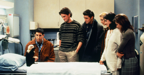 This Is The Real Reason Marcel Was Axed From Friends