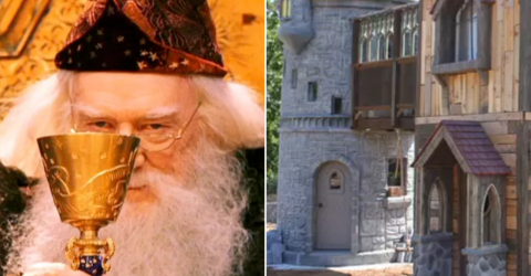 Elderly couple builds their grandchild the most incredible Harry Potter playhouse